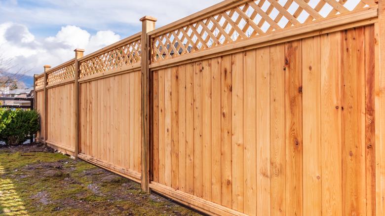 Wood fencing between properties