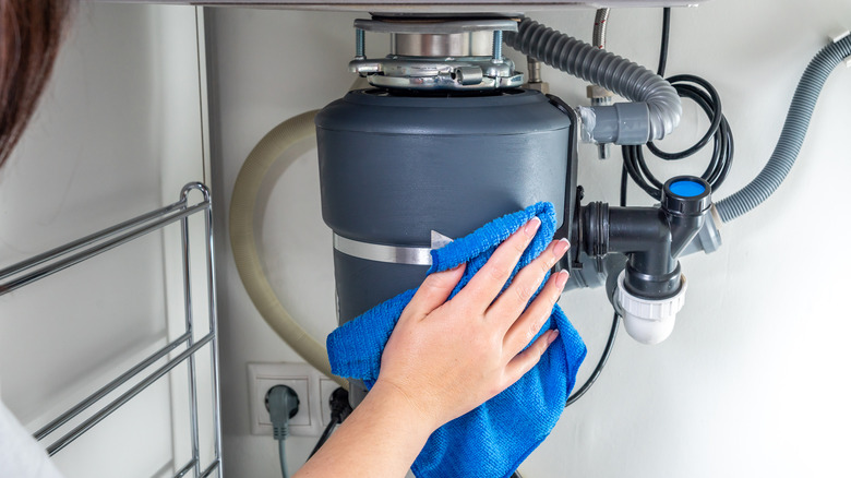 hand cleaning garbage disposal