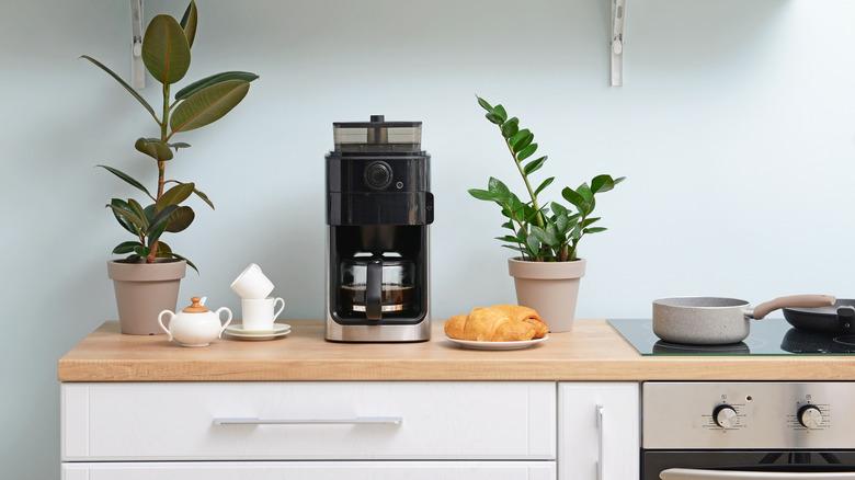 black carafe coffee maker