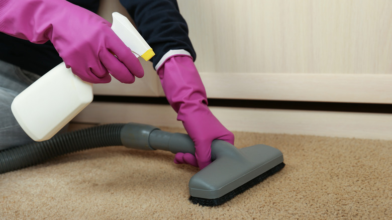 Gloved hands spraying and vacuuming
