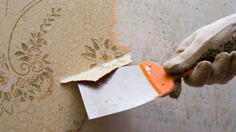 wallpaper removal scraper