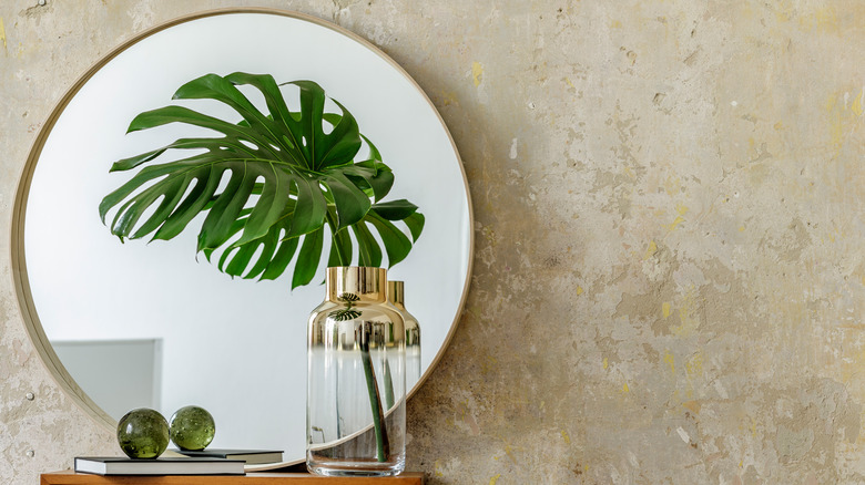 wall mirror with plant