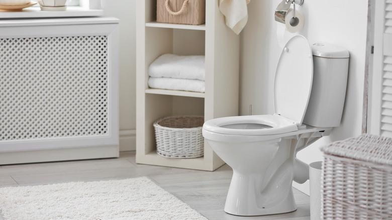 toilet in all-white bathroom