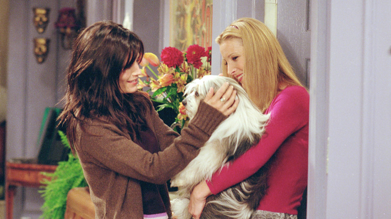 Monica, Phoebe, and a dog on Friends